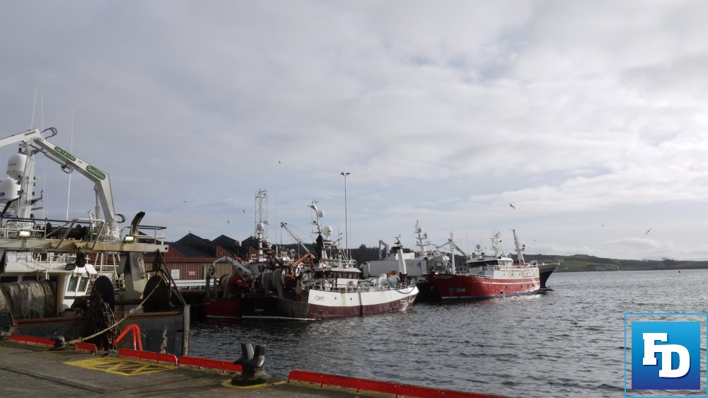 The Sea-Fisheries Protection Authority (SFPA) says that interim measures will remain in place for the weighing of fish products until 01 June