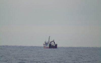Danish fishing boats accused of flouting Scottish multi-rig regulations