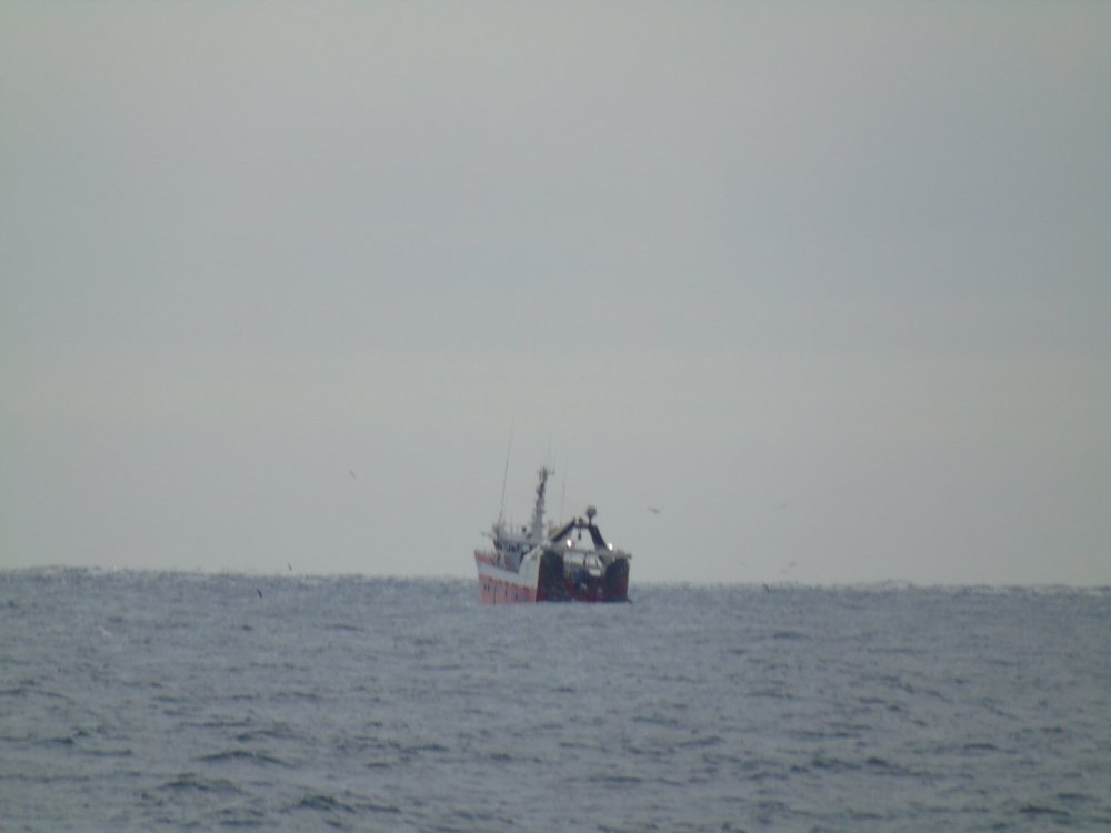 Danish nephrops fishing vessels have been accused of flauting Scottish regulations on using multi-rig trawl nets