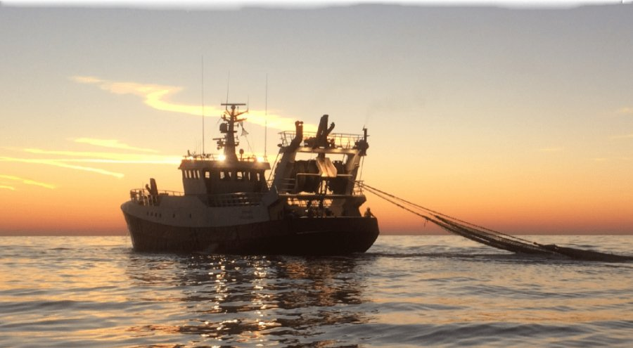 An agreement has been reached on flyshooting in the eastern English Channel. Photo: Visned