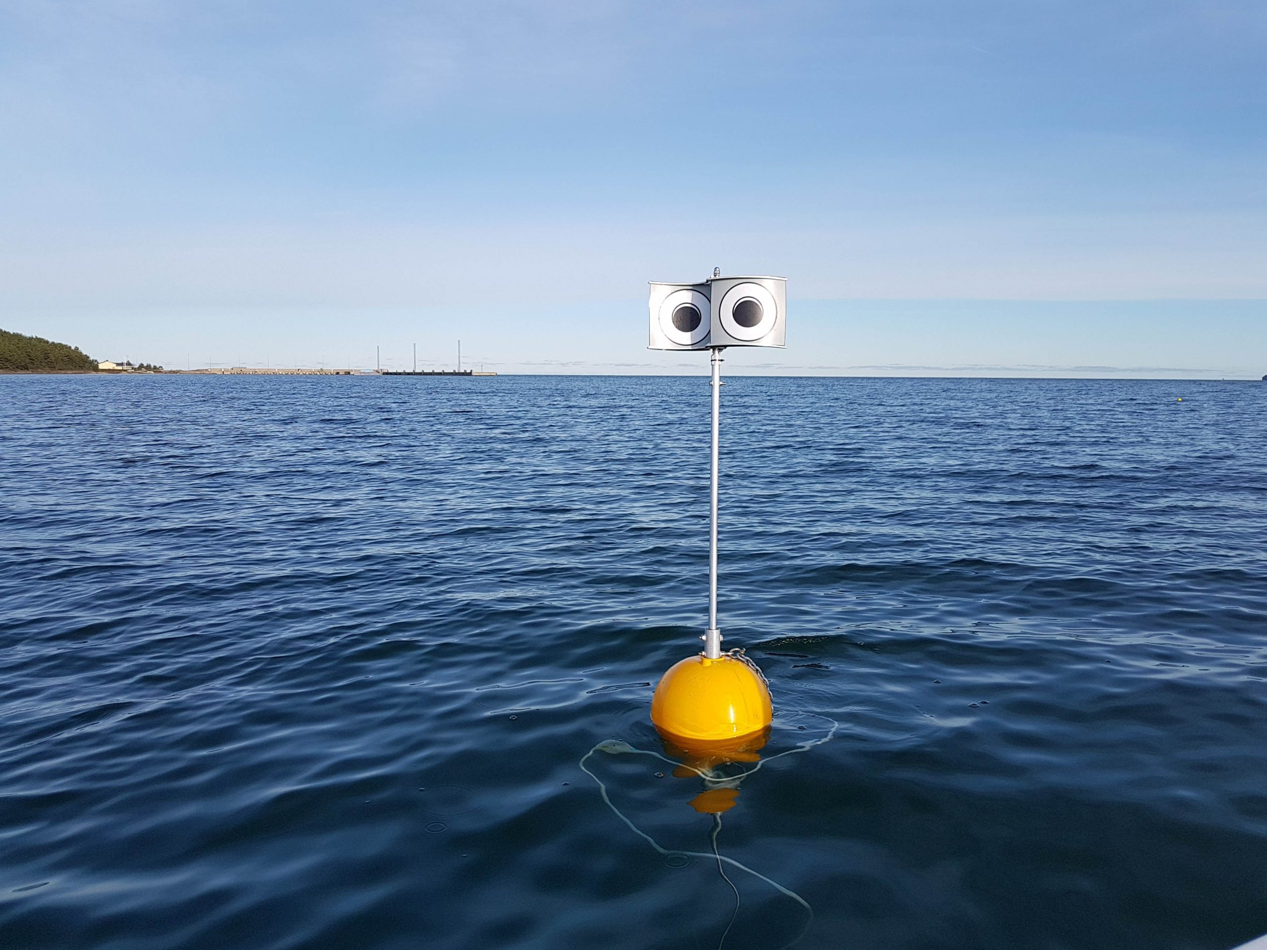 The looming-eyes buoy, one of the projects funded inder the MSC to drive progress in sustainable fishing. Photo: Andres Kalamees