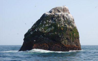 SWFPA Chief urgesEU-registered fishing vesselsto obey UK regulations