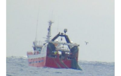 Danish Fisheries Association claim fishing boats not using illegal multi-rig