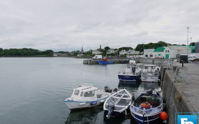 Collins challenges Taoiseach on track record with fishing industry