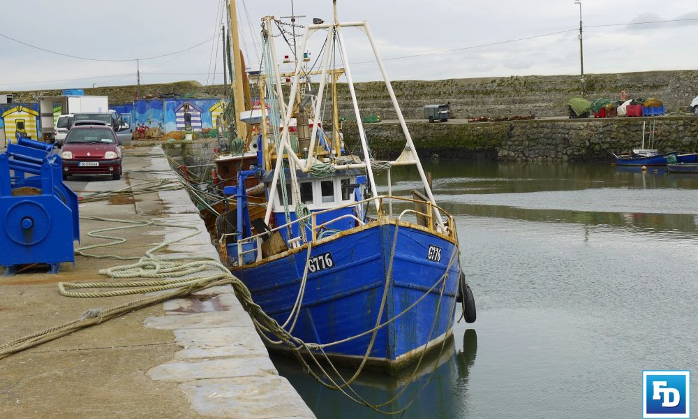 The Marine Institute has called on Irish fishers to participate in development of fish mapping app aimed at reducing unwanted catches