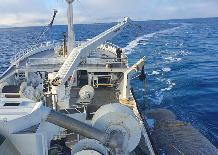 Norwegian researchers are close to finding solutions to control the catches in the blue whiting fishery during a recent fishing expedition