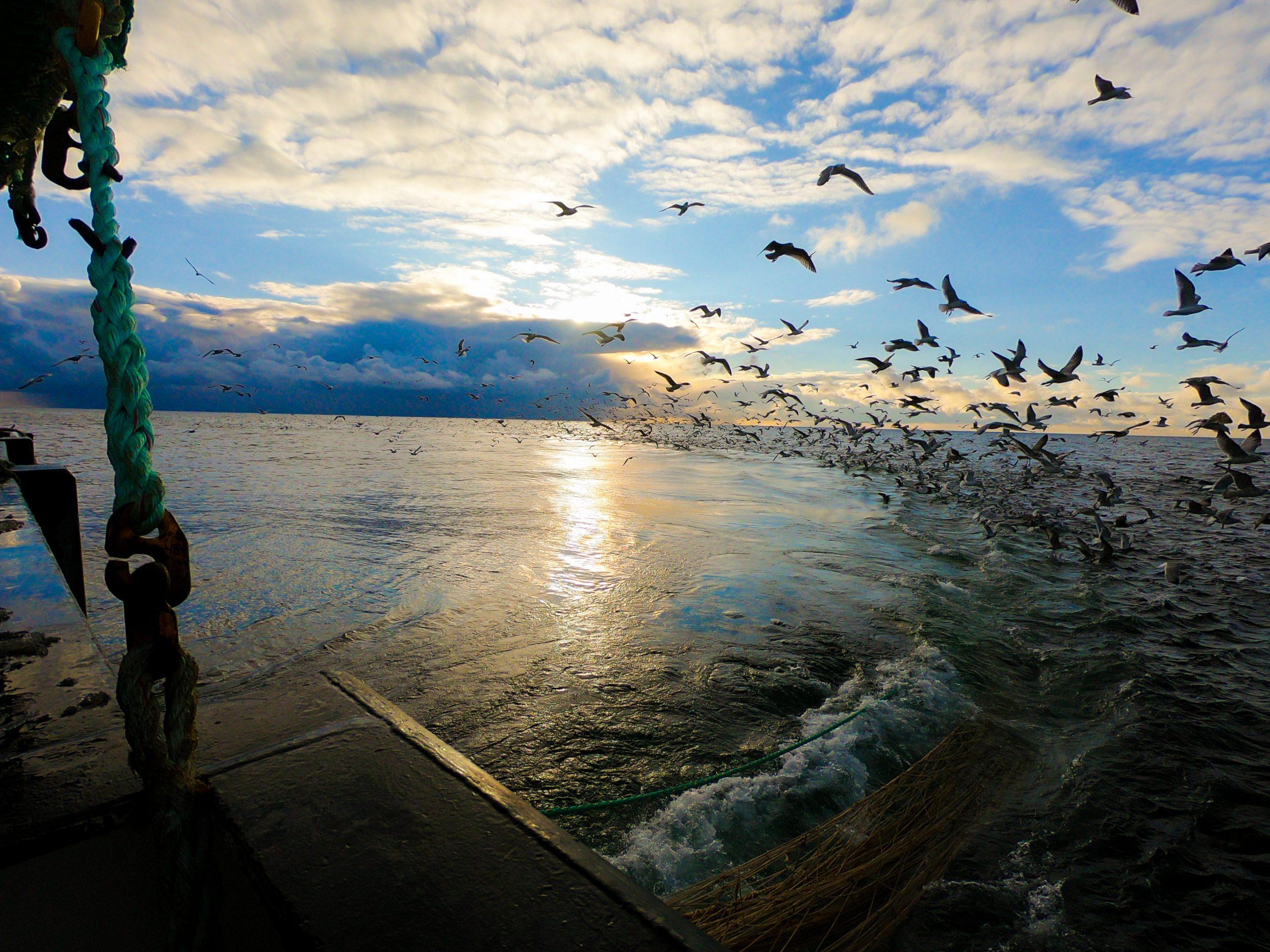 danish fishermen's annual meeting
