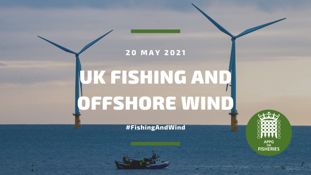 The APPG on Fisheries were advised to how fisheries and offshore wind farms can positively collaborate