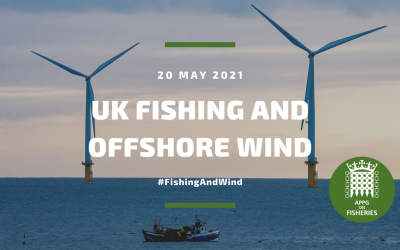 APPG on Fisheries: Exploring how fisheries and offshore wind farms can co-exist