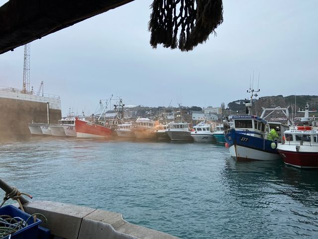 The Jersey Island fishing fleet is close to collapse as Normandy closes ports to landings. Photo courtesy of Peter Rondel