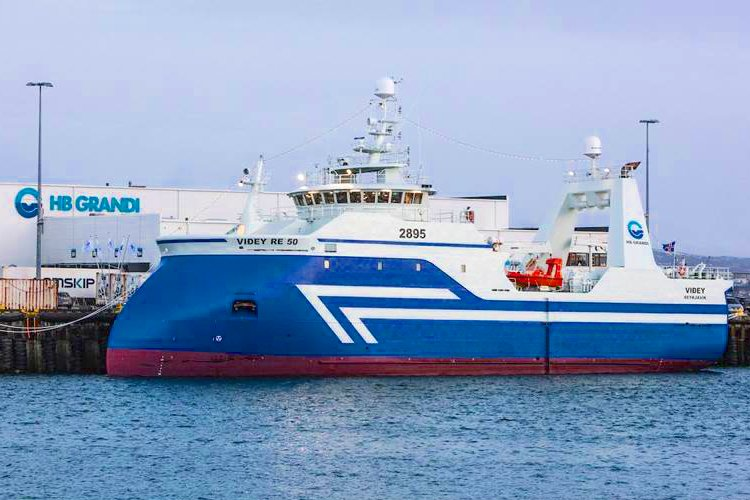 Icelandic freezer trawlers like the Videy above have found their fishing frustrated by a haddock explosion