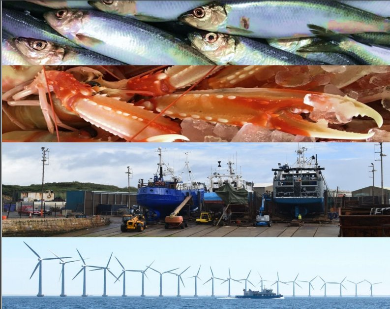 The Final Report in the Northern Ireland Fishing and Seafood Development Programme