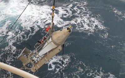 Scientist working to understand behaviour of Northeast Atlantic Mackerel