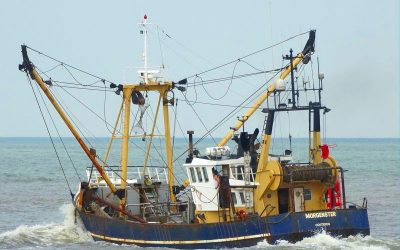 EU Fisheries Control Coalition condemns EU fisheries ministers over regulations