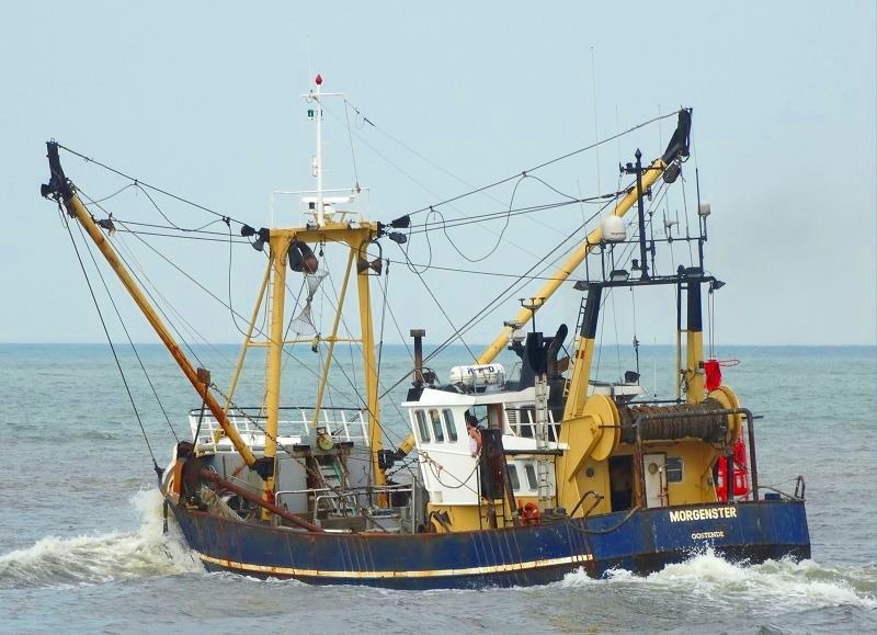 EU Fisheries Control Coalition condemns EU fisheries ministers for seeking loopholes rather than a robust Control Regulation