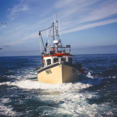 The Cornish Fish Producers Organisation is seeking a new Chief Executive Officer.
