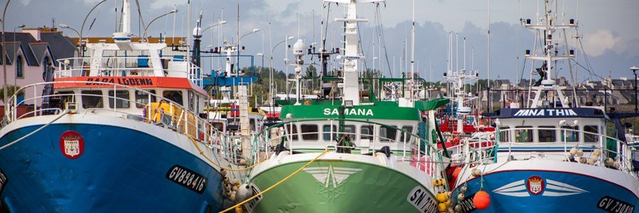 Europêche has urged the EU not to succumb to external pressure from the WTO and defend fuel tax relief schemes for the fishing industry