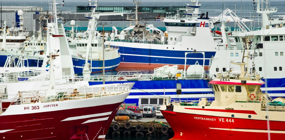 Icelandic Minister of Fisheries Kristján Þór Júlíusson has followed the advice of the Marine Research Institute in setting 2022 quotas