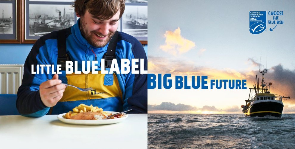 sustainable fisheries performance