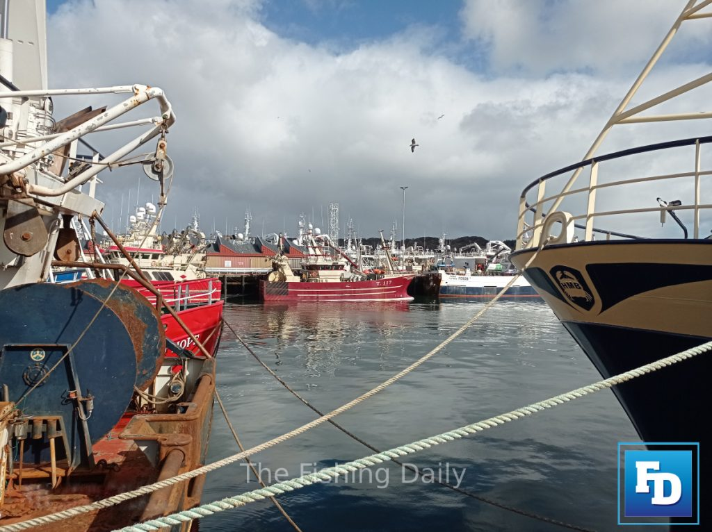 Minister McConalogue is positive ahead of meeting Irish fishing industry representatives this afternoon