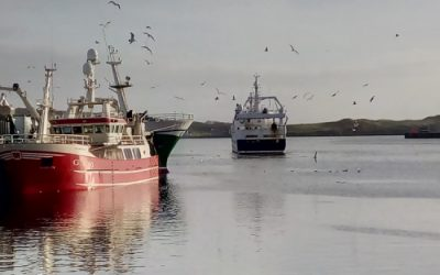 Commission study shows Ireland committed 0.8% of CFP infringements