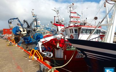 EU Commission launches consultation on Fishing Opportunities 2022