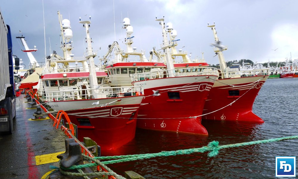 State Authority acted 'ultra vires', states Judge in Killybegs weighing system case https://thefishingdaily.com/featured-news/state-authority-acted-ultra-vires-states-judge-in-killybegs-weighing-system-case/