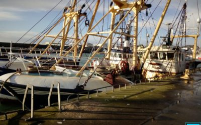 EU moves closer to banning bottom trawling after vote in European Parliament?