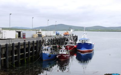 Under 15m mackerel hook and line fishery needs more quota
