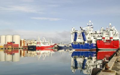 Concern raised over Brexit compensation and fisheries penalty points