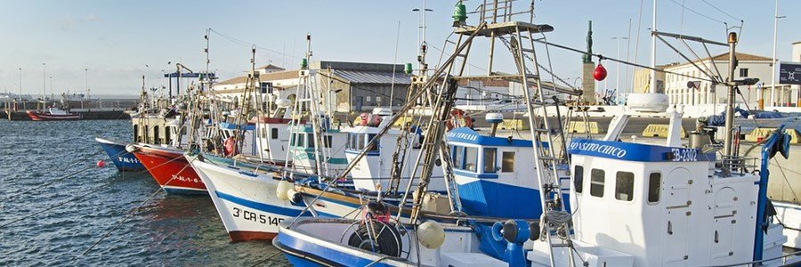 New report shows shortcomings in the implementation of the Control Regulation claims Comissioner for Fisheries Virginijus Sinkevičius