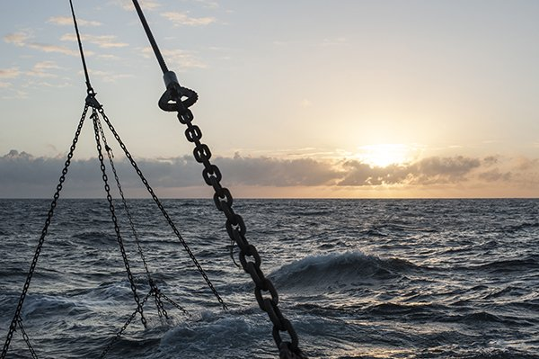 The MMO provides an update new fisheries technical measures