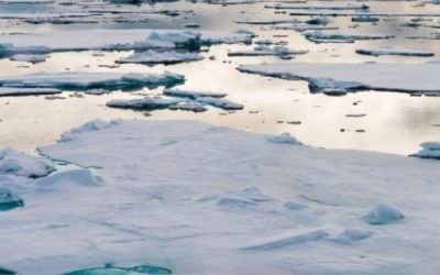 Agreement to prevent unregulated fishing in the Arctic enters into force