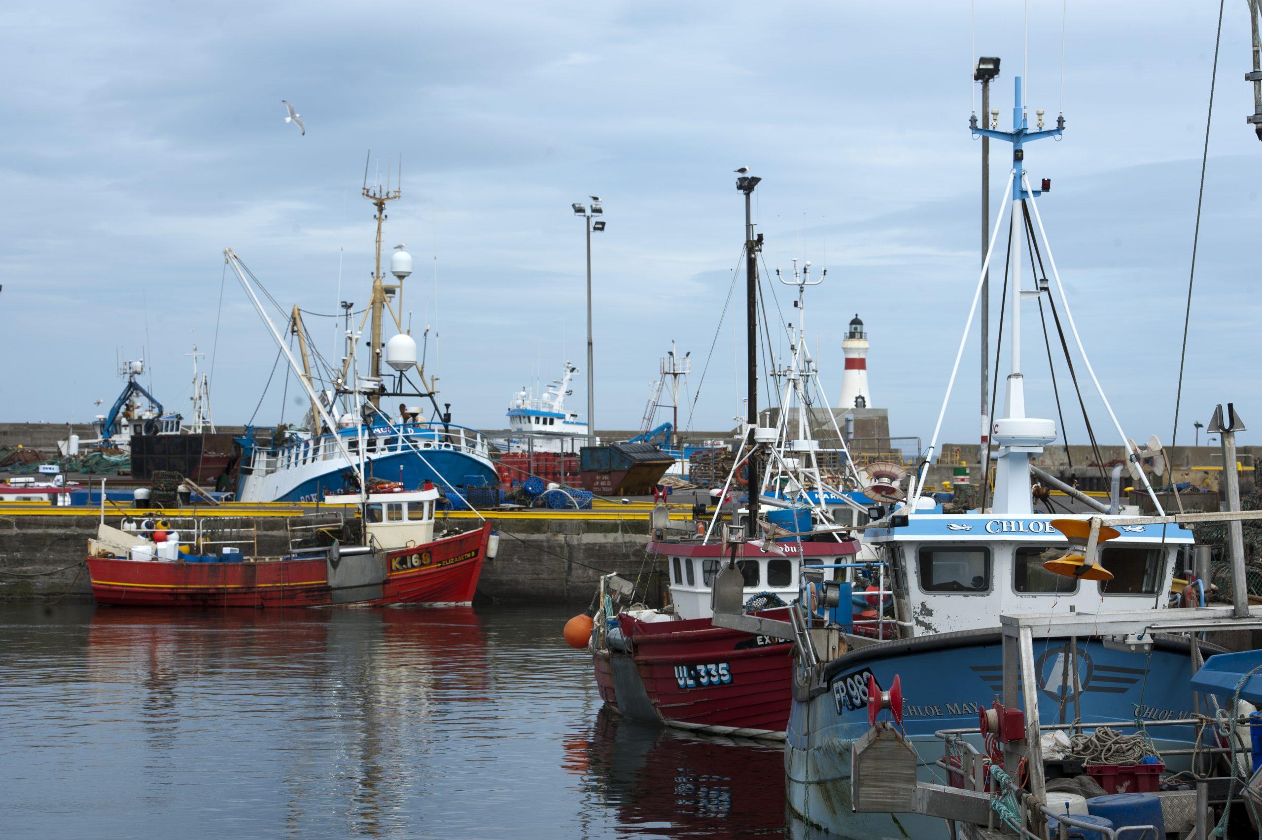 First Seafish economic performance estimates for 2020 show negative impact of the COVID19 pandemic on the UK fishing fleet