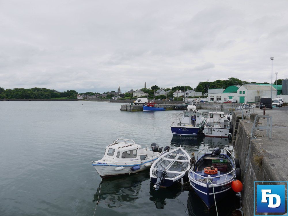 Minister for Agriculture, Food and the Marine Charlie McConalogue has now received the interim report of the Seafood Sector Task Force.