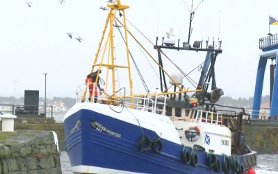 Isles MP Carmichael makes call for evidence from UK seafood industry