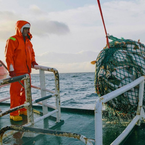 government stance seafood exports