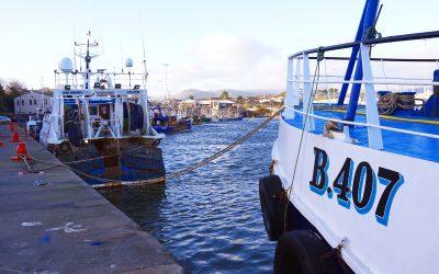 Anger as Northern Ireland fleet granted access to Irish Inshore Waters