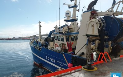 FD Podcast S1 Ep11 – Minister says he is committed to Irish Fishing Industry