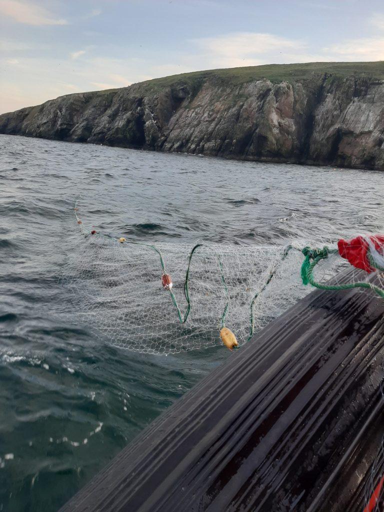illegal fishing inland fisheries ireland
