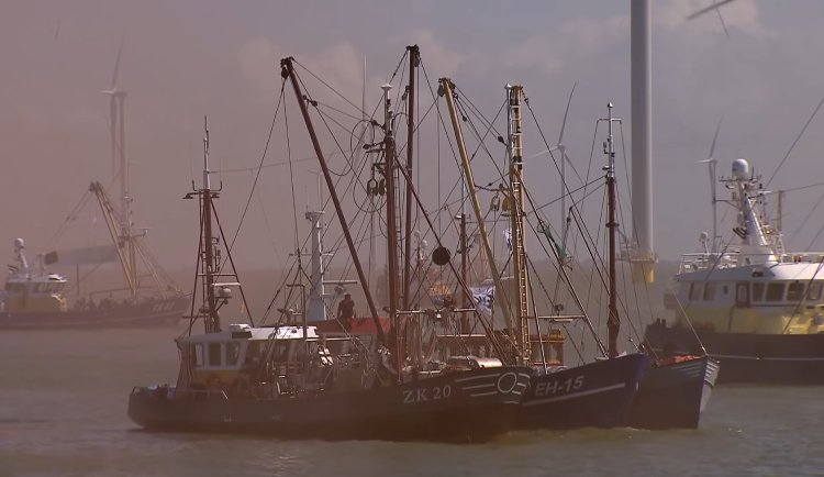 The Dutch fishing industry protested on 14 August at Afsluitdijk over growing impact of offshore wind farms on traditional fishing grounds