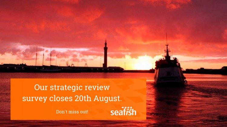 Seafish Strategic Review: Stakeholder Survey