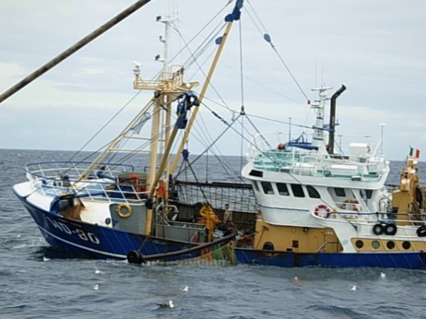Fine Gael MEP, Sean Kelly has called on the Irish Government to compensate former fishing vessel owner CJ Gaffney and his family now