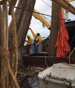 Danish fishing has been left reeling over revelations that neighbouring Dutch beam trawlers are fishing illegally in the country's waters