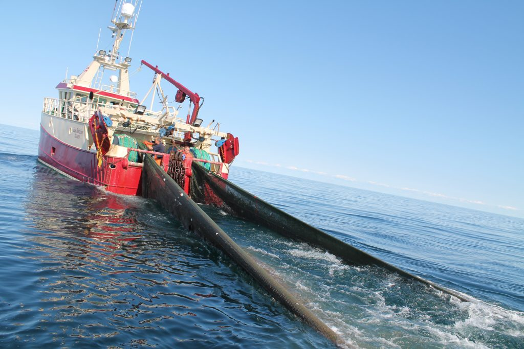 Danish ruling party SPP are looking to ban bottom trawling
