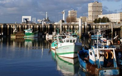 NFFO sets out its position on granting of UK fishing licences