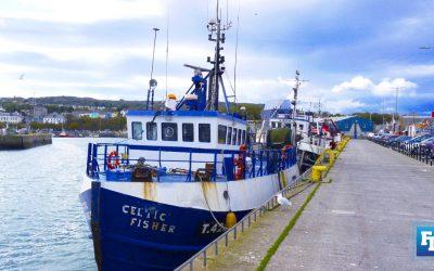 Labour issues in Irish fishing industry focus of new BIM study