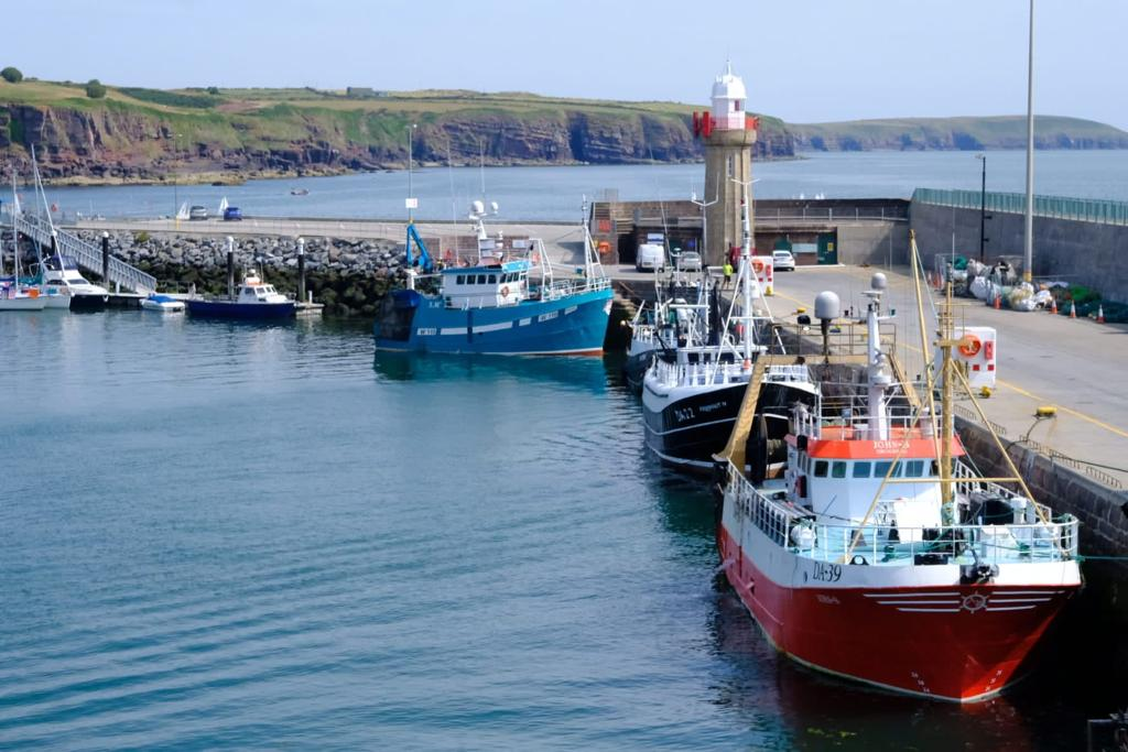 Details of Temporary Tie-up Scheme for Irish fishing fleet announced by Minister for Agriculture, Food and the Marine, Charlie McConalogue