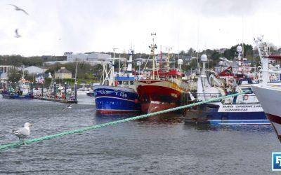 Minister McConalogue defends Sea-Fisheries Bill 2021 under Dáil scrutiny