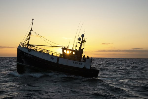 During Sustainable Seafood Week consumers urged to choose MSC blue ecolabel